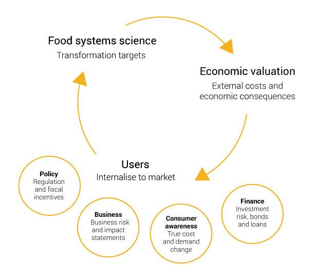 FoodSIVI food system impact valuation diagram