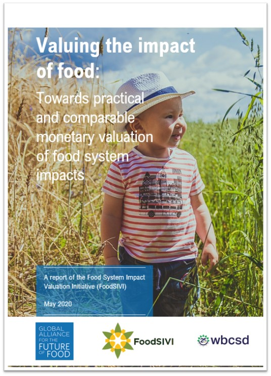 FoodSIVI Report 2020