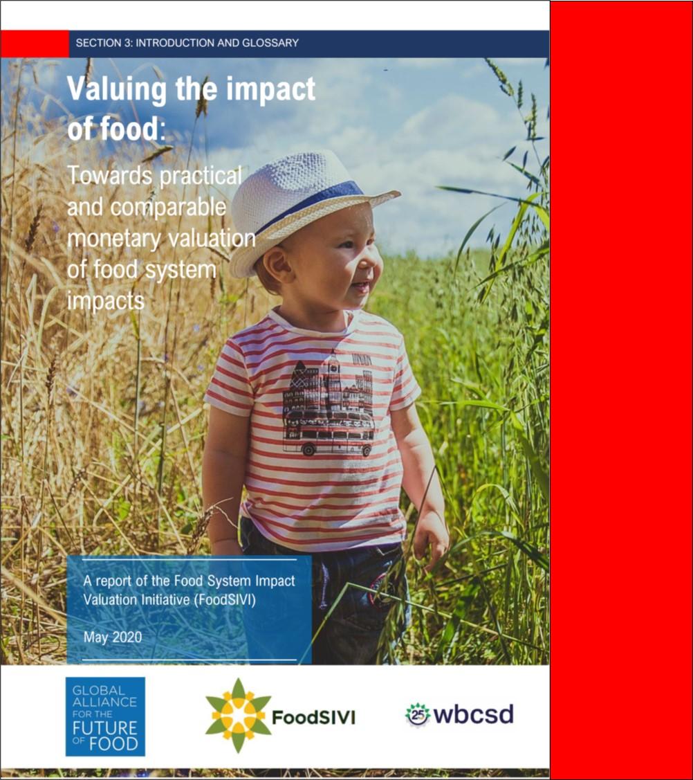 FoodSIVI Report 2020
