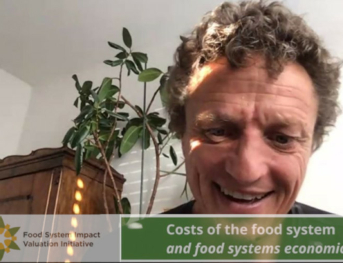 FoodSIVI Webinar on the Costs of the Food System